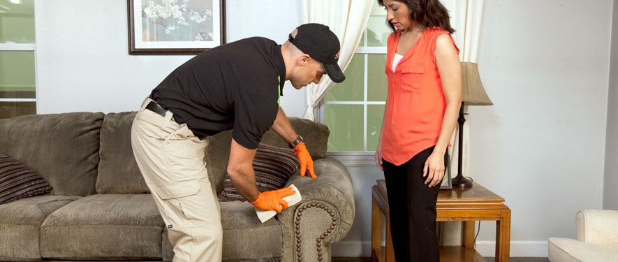 Pomona, CA carpet upholstery cleaning
